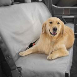 Dog sittig on seat cover in a car.
